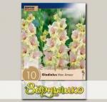 Гладиолус крупноцветковый MON AMOUR, 10 шт. NEW