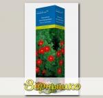 Лапчатка кустарниковая МЭРИОН РЕД РОБИН, 1 шт. СЕВЕРНЫЙ САД