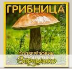 Грибница субстрат микоризный Подберезовик Разноцветный, 1 л