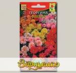 Георгина махровая Фигаро, Смесь, 11 шт.