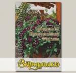 Виола ампельная Эндурио Натуральный Фиолет F1, 8 шт. Platinum