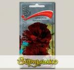 Шток-роза Мажоретте Браун-ред, 0,1 г