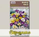Крокус ботанический MIXED, 25 шт.