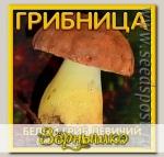 Грибница субстрат микоризный Белый гриб Девичий, 1 л