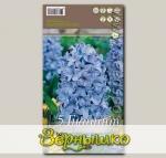 Гиацинт садовый DELFT BLUE, 5 шт.