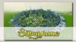 Дизайнерский набор выкройки для клумбы (с семенами) Красота Садовая 3 Бело-голубое безе