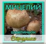 Мицелий зерновой Шампиньон Лесной, 150 мл