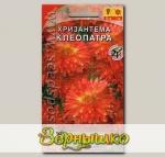 Хризантема индийская Клеопатра, 0,05 г