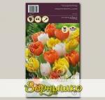 Тюльпан махровый ранний ORANGE/YELLOW/WHITE MIXED, 20 шт.