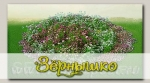 Дизайнерский набор выкройки для клумбы (с семенами) Красота Садовая 4 Бело-розовый зефир