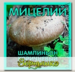 Мицелий зерновой Шампиньон Коричневый, 150 мл
