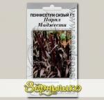Пеннисетум сизый Парпл Маджести F1, 3 шт. Профессиональные семена