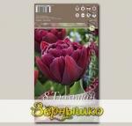 Тюльпан махровый ранний ALISON BRADLEY, 8 шт.