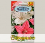 Ипомея Квамоклит, Смесь, 0,5 г