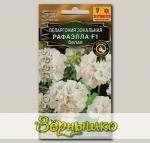 Пеларгония Рафаэлла Белая F1, 5 шт. Высшее качество
