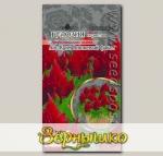 Целозия перистая Айс Крим Вишневый факел, 10 шт. PanAmerican Seeds Профессиональные семена