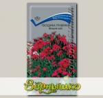 Гвоздика - травянка Флэшинг Лайт, 0,1 г