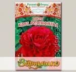 Пион КАРЛ РОЗЕНФИЛЬД, 1 шт.