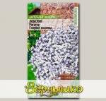 Лобелия ампельная Регатта Голубой Водопад, 8 шт. PanAmerican Seeds Ампельные Шедевры