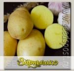 Севок картофеля Милена, 500 г