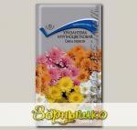 Хризантема крупноцветковая Смесь окрасок, 0,05 г