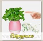 Умный музыкальный горшок для цветов Smart Music Flowerpot Розовый