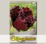 Тюльпан бахромчатый LABRADOR, 8 шт.