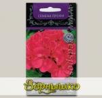 Пеларгония Маверик Пурпурная, 5 шт. Семена профи