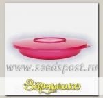 Тарелка d=230 мм с герметичной крышкой (контейнер) (Цвета в ассортименте)