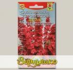 Дельфиниум королевский Шпиль, 30 шт.