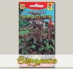 Клещевина Пальмовая ветвь, 5 шт.
