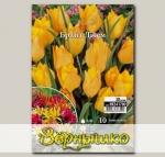 Тюльпан ботанический BRIGHT GEM, 10 шт. NEW