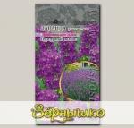 Лаванда узколистная Пурпурный колос, 5 шт. PanAmerican Seeds Профессиональные семена