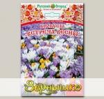 Крокус ботанический ВСТРЕЧА ВЕСНЫ СМЕСЬ, 25 шт.