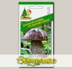 Мицелий зерновой Подберезовик Разноцветный, 30 мл