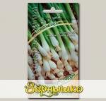 Лук на зелень Белое перо, 0,5 г Семена от автора