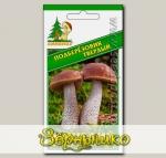 Мицелий зерновой Подберезовик Твердый, 30 мл