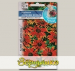 Рудбекия Осенние краски, Смесь, 30 шт. Северное сияние