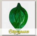 Салатник Oval Leaf 17,4x28,6x4 см