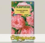 Гвоздика гренадин Роза, 0,1 г