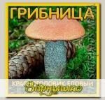 Грибница субстрат микоризный Красноголовик Еловый, 1 л