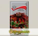 Рудбекия хирта Горький шоколад, 10 шт.