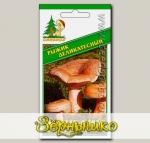 Мицелий зерновой Рыжик Деликатесный, 30 мл