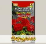 Пеларгония зональная Квантум Ред F1, 3 шт.