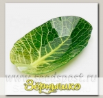 Салатник Walmer Colourful Leaf Lettuce, 18х27 см