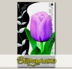 Тюльпан Триумф ALIBI, 10 шт.