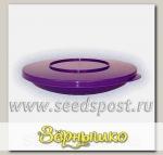 Тарелка d=180 мм с герметичной крышкой (контейнер) (Цвета в ассортименте)