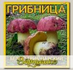 Грибница субстрат микоризный Белый гриб Царский, 1 л