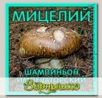 Мицелий зерновой Шампиньон Императорский, 150 мл