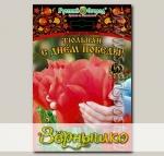 Тюльпан Грейга С ДНЕМ ПОБЕДЫ!, 5 шт. Эксклюзив